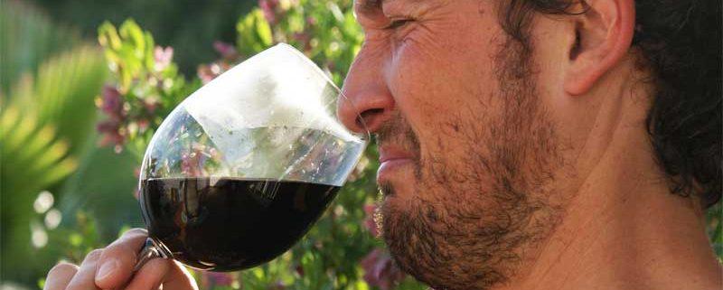 vino-picado