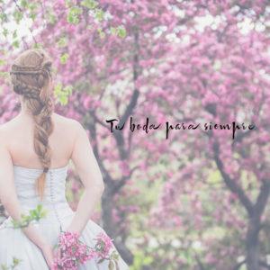 boda-en-valencia