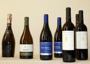 vinos y cava